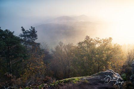 Deutschland, Rheinland-Pfalz, Wernersberger Geiersteine, Sonnenaufgang, Nebel