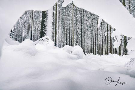 Deutschland, Odenwald, Waldbrunn, Winter, Schnee, Wald